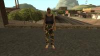 Скриншот к файлу: Скин lsv1