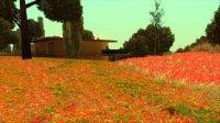 Dream Grass